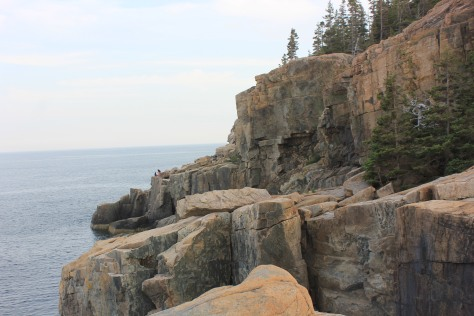 Otter Cliffs